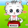 My Cute Pets 2 -