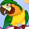 Polly Wants A Cracker -