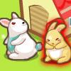 Rabbit Village -