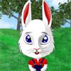 Funny Bunny -