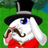 Bouncy Bunny -