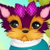 Yorkie Lover Secrets - Fun Makeover Games For Girls