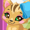 Kitty Care 2  - Kitty Care Games