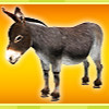 Animal Puzzle Mania - Online Puzzle Games