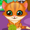Cute Kitty Care - Pet Caring Games
