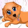 Dog Health Care - Free Animal Doctor Games