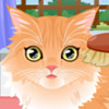 Kitty Groomer - Animal Care Games