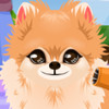Puppy Groomer - Pet Grooming Games