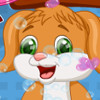 Cute Puppy Caring - Puppy Caring Games
