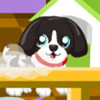 Clean Up Pet Shop - New Clean Up Games
