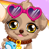 Puppy Makeover Hair Salon - Puppy Makeover Games